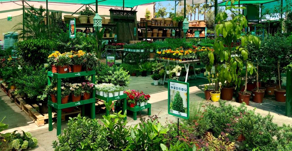 Imagen de una de las partes del vivero.Se ven arbustos de porte alto y medio así como plantas de flor y frutales