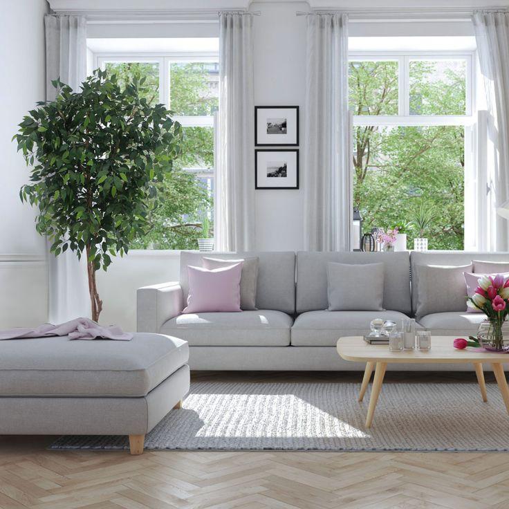 ficus-decoración-interior